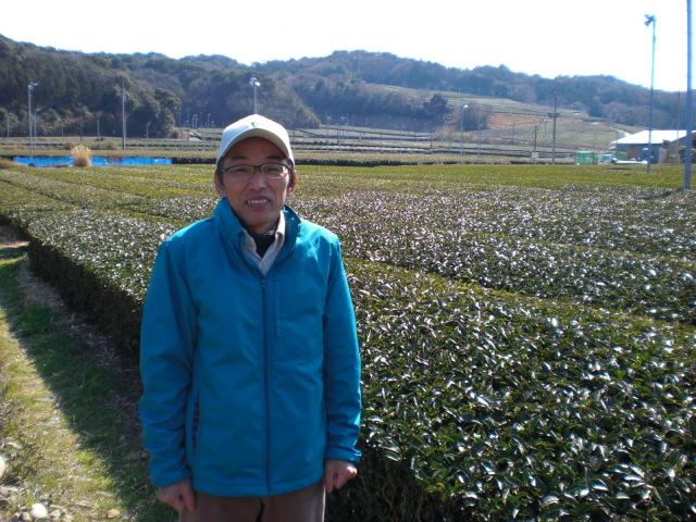 茶畑と自分